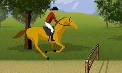 Fuchs Pferdespringen