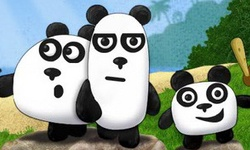 3 Pandas