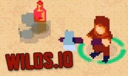 Game Online  Wilds.io