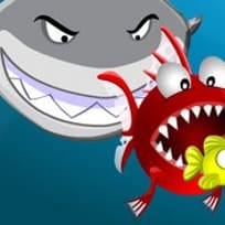 Haispiele