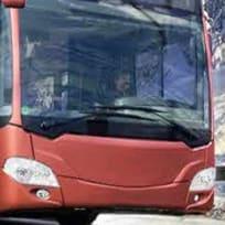 Soferul Autobuzului de Iarna 2