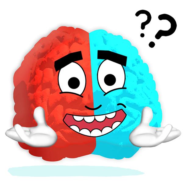 Brain Quiz 3d Play Brain Quiz 3d On Poki