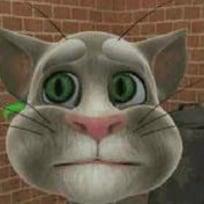 Gran Gato Que Habla 2 Online Juega Gratis En Paisdelosjuegos