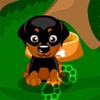 Juegos De Cuidar Cachorros De Perros Recien Nacidos Gratis Noticias Del Perro
