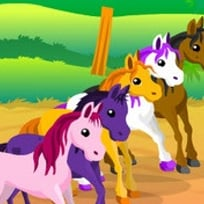Jockey de Pony