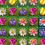 Puzzle de Flores